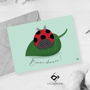 carte postale coccinelle création française
