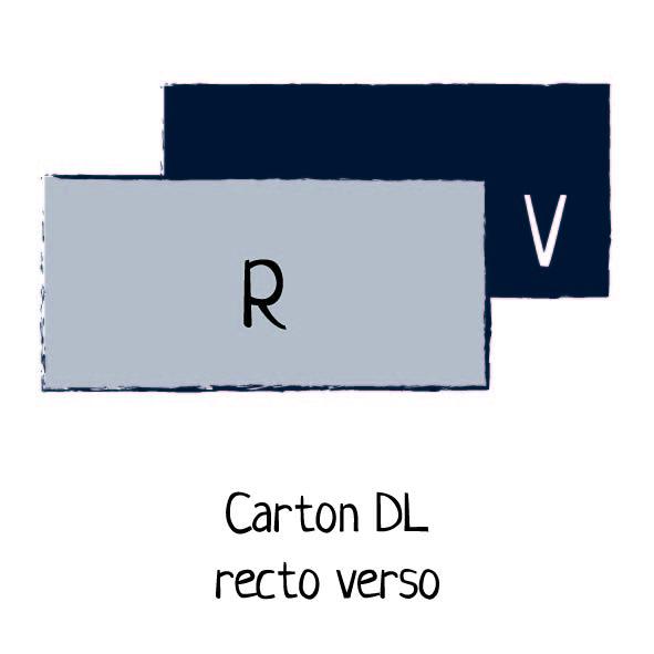 carton rectoverso