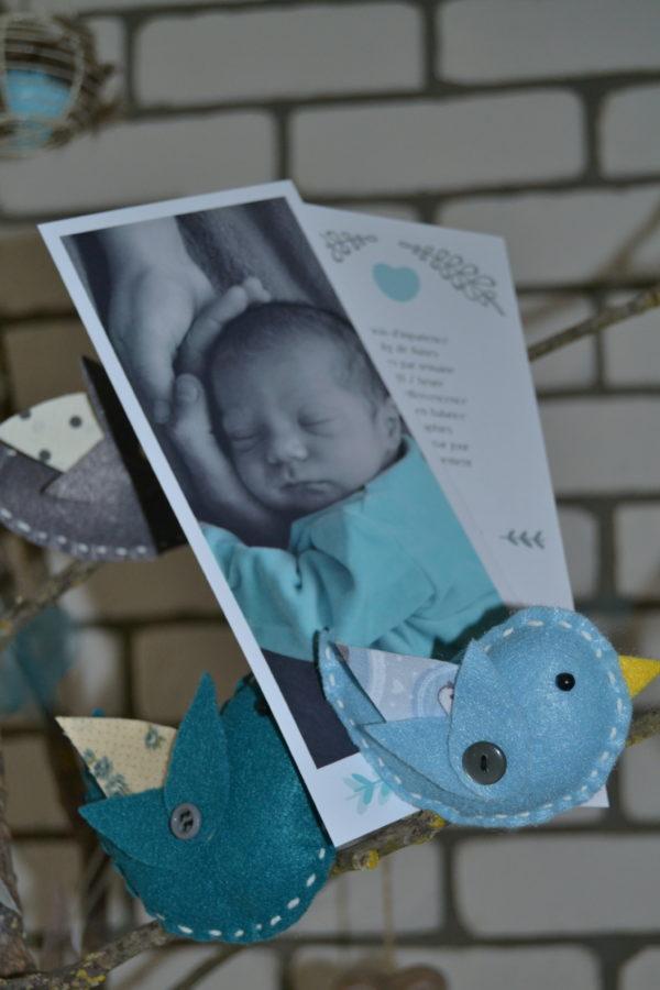Faire-part de naissance garçon avec photo